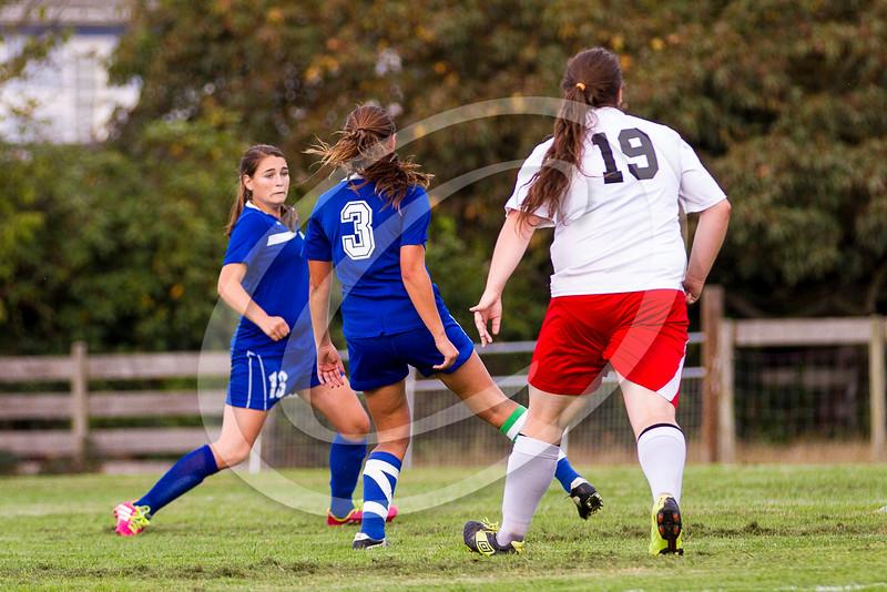 soccer_girls_2014420