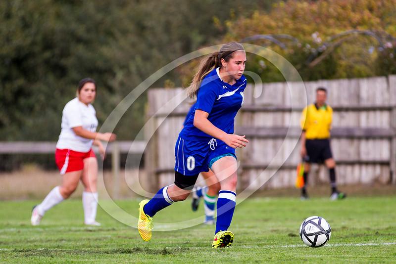 soccer_girls_2014402