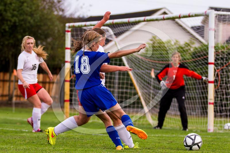soccer_girls_2014382