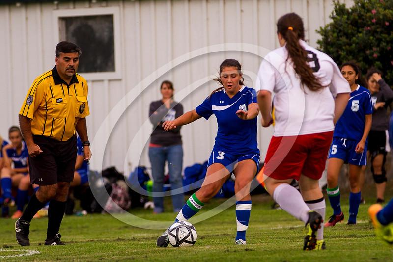 soccer_girls_2014369