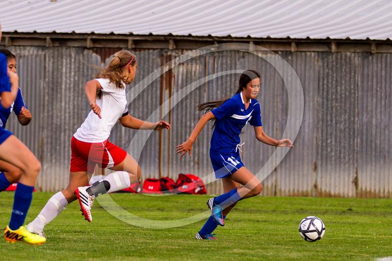 soccer_girls_2014407