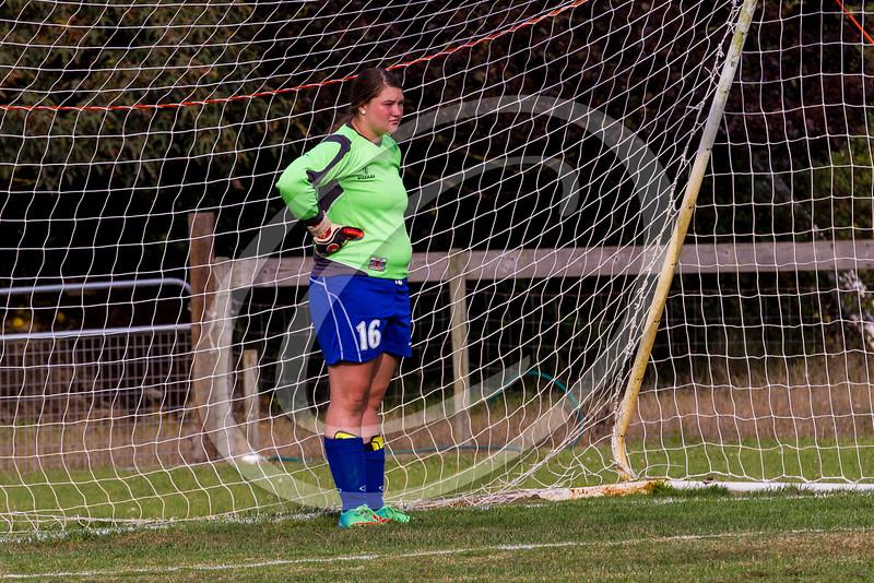 soccer_girls_2014361