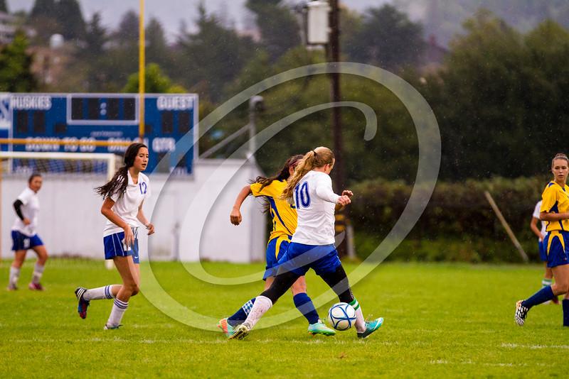 soccer_girls_201440