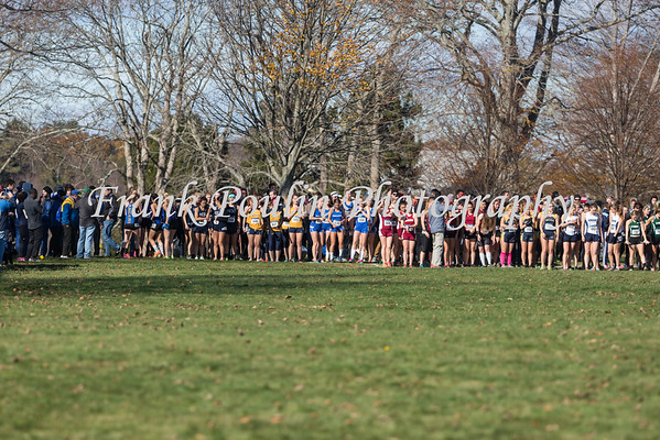 NCAA DIII New England cross country - women