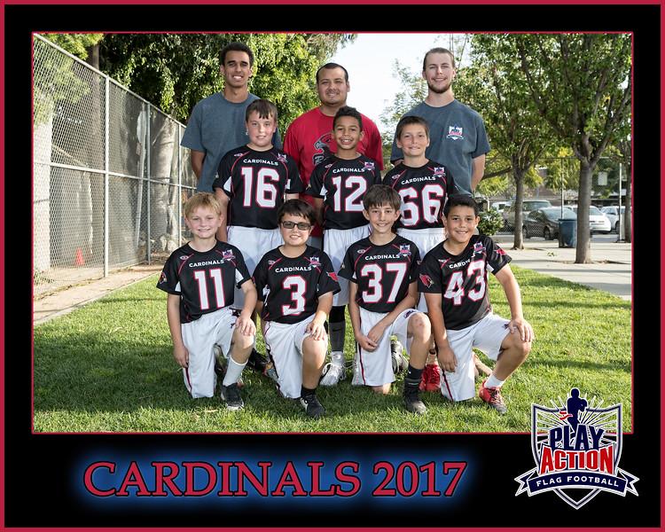 cardinals 3 8X10