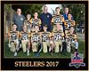 steelers 2 8X10