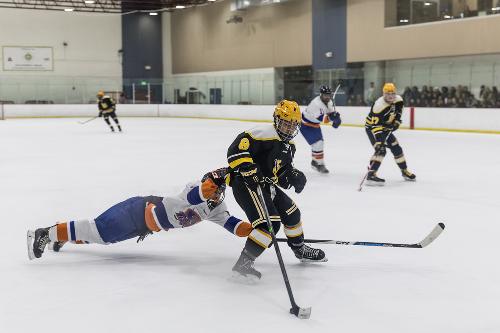 IMAGE: https://photos.smugmug.com/Sports/Ice-Hockey/LB--Fullerton-01-28-17/i-VCVrrC2/0/XL/LBSUHockey012817-049-XL.jpg