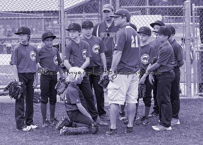 Cubs Baseball 2014