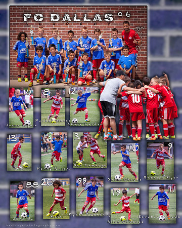 20x16 FCD 06 Composite Poster