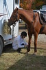 Brigitte Horse Competition_2016_0854