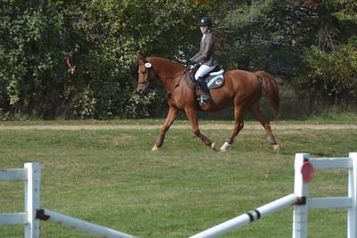 Brigitte Horse Competition_2016_0014