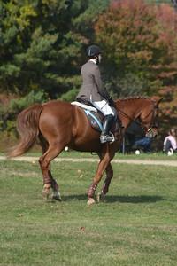 Brigitte Horse Competition_2016_0029