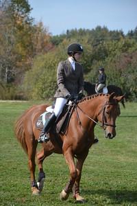 Brigitte Horse Competition_2016_0021