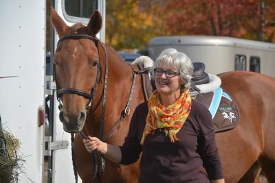 Brigitte Horse Competition_2016_0002