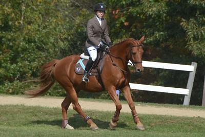 Brigitte Horse Competition_2016_0030