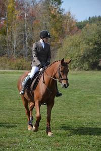 Brigitte Horse Competition_2016_0018