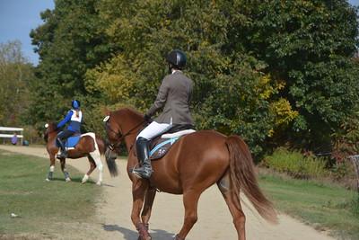 Brigitte Horse Competition_2016_0010