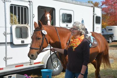 Brigitte Horse Competition_2016_0004