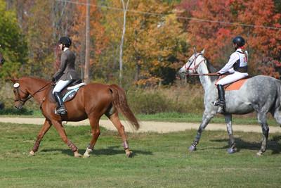 Brigitte Horse Competition_2016_0013