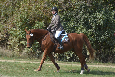 Brigitte Horse Competition_2016_0022
