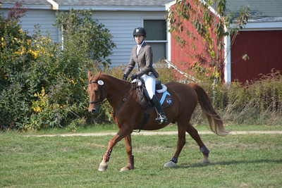 Brigitte Horse Competition_2016_0024