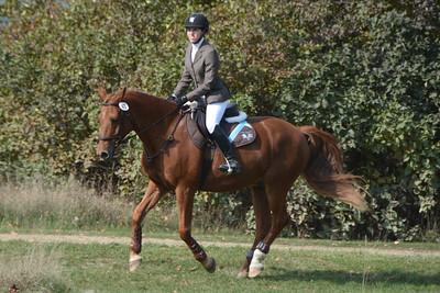Brigitte Horse Competition_2016_0023