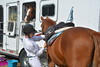 Brigitte Horse Competition_2016_0850