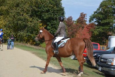 Brigitte Horse Competition_2016_0011