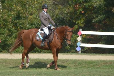 Brigitte Horse Competition_2016_0031