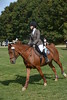 Brigitte Horse Competition_2016_0027