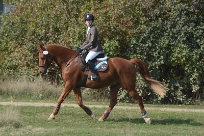 Brigitte Horse Competition_2016_0017