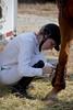 Brigitte Horse Competition_2016_0855