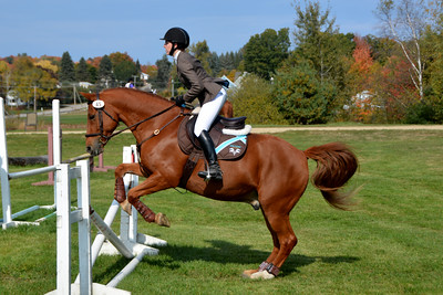 Brigitte Horse Competition_2016_0033