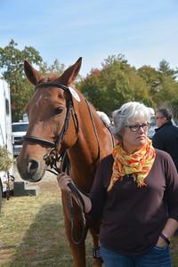 Brigitte Horse Competition_2016_0005