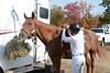 Brigitte Horse Competition_2016_0842