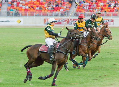 International Polo 2012