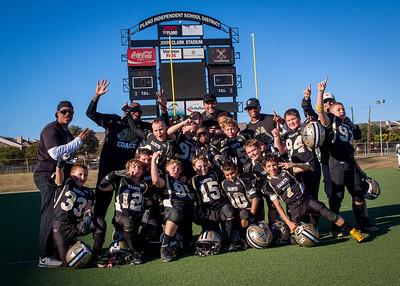 Saints Super Bowl 2014