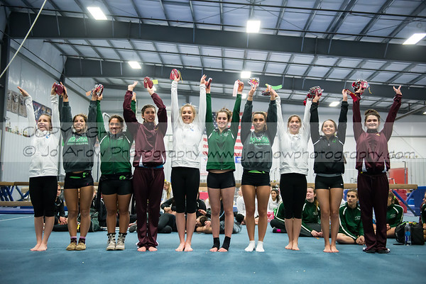 Girls HS Gymnastics 2014-02-01