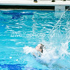 20170209_METROS_Diving_Girls-237