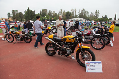 An assortment of Triumph motorcycles on display.