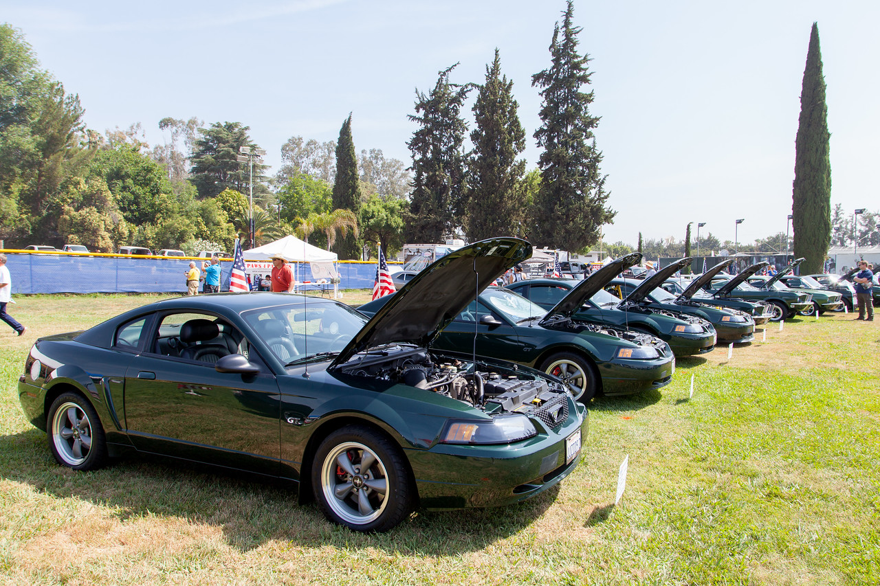 The Ford Mustang Bullitts