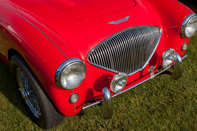 1954 Austin Healey 100/4, owned by Howard Macken