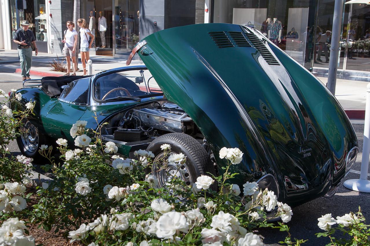 Steve McQueen's 1956 Jaguar XKSS - Petersen Automotive Museum
