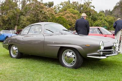 Ian Wayne's 1965 Alfa Romeo Giulia Sport Speciale