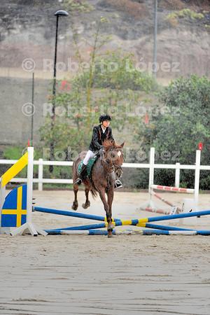 Campeonato Social de Reyes - El cortijo 29.12.2013