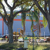 Date:  11/10/11<br /> Location:  Sarasota, FL