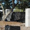 Date:  1/12/11<br /> Location:  Sarasota, FL