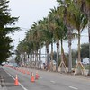 Date:  2/23/11<br /> Location:  Sarasota, FL