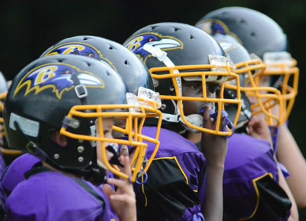Ravens - Tampa Bay Youth Football League