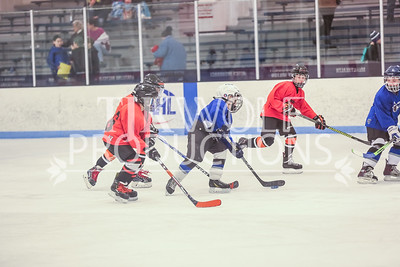 Red Verona vs  Quad City-5